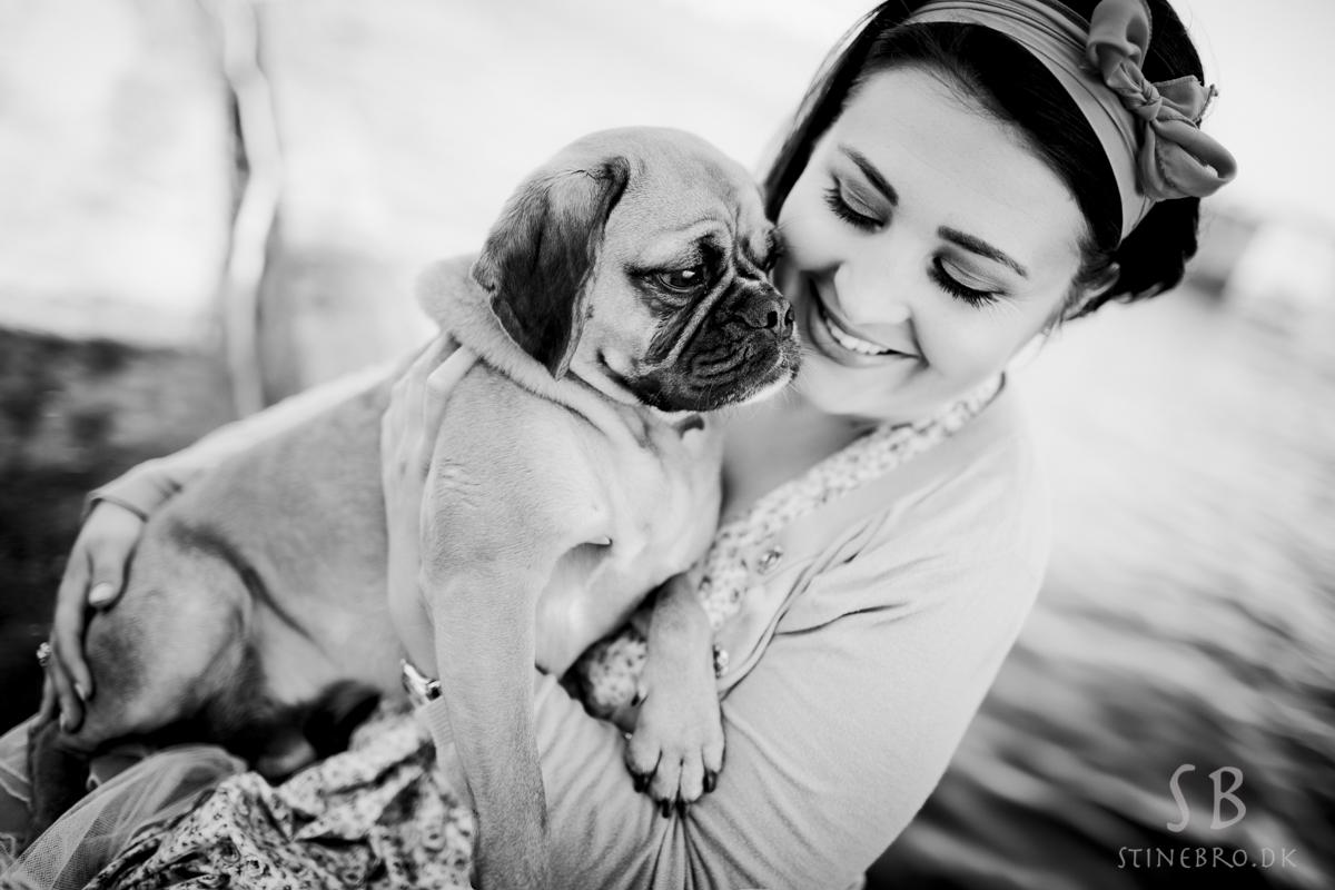 fotograf-hund1