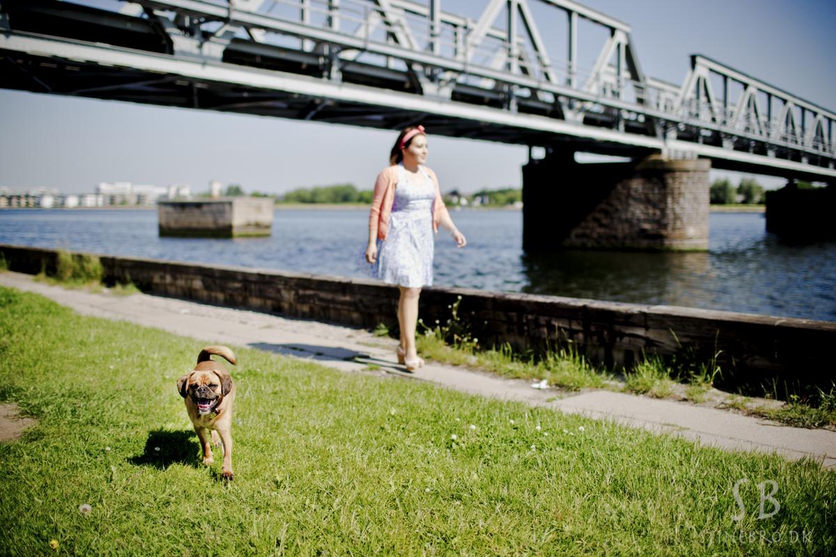 hund-i-naturen